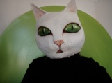 chat blanc aux yeux verts